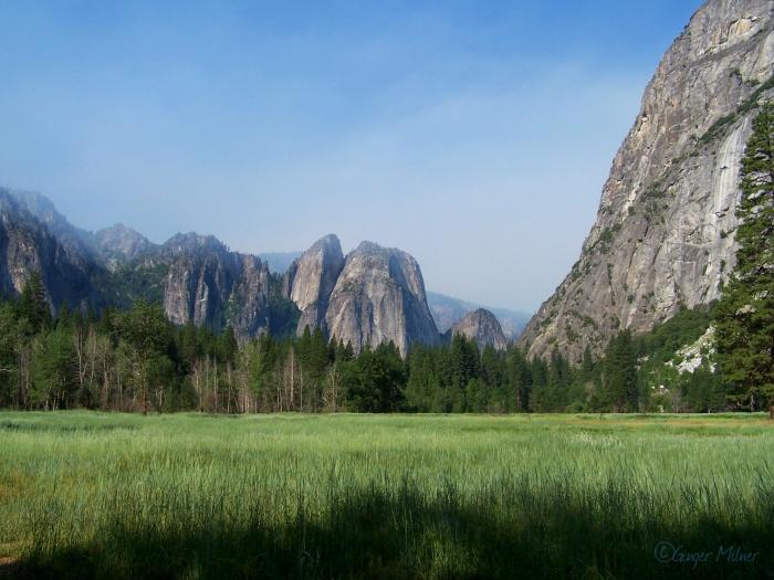 My Most Loved Meadow--Leidig Meadow, Yosemite, July 2009.